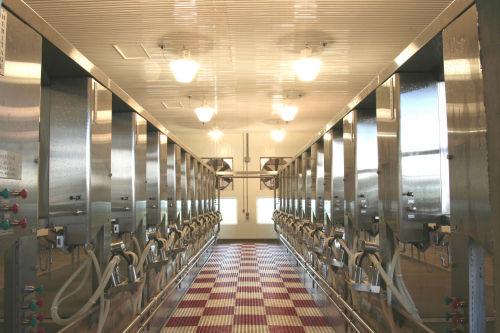 Used Remanufactured Germania Herringbone Milking Parlor